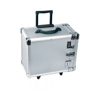 Carrying Cases & Jewelry Organizers